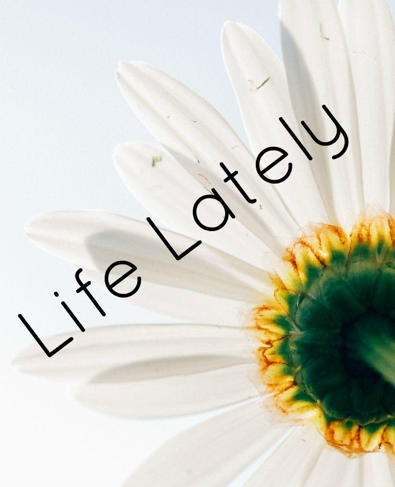 Life_lately_9.15