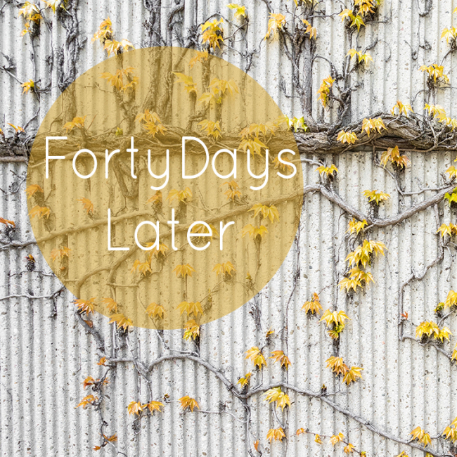 Forty Days Later