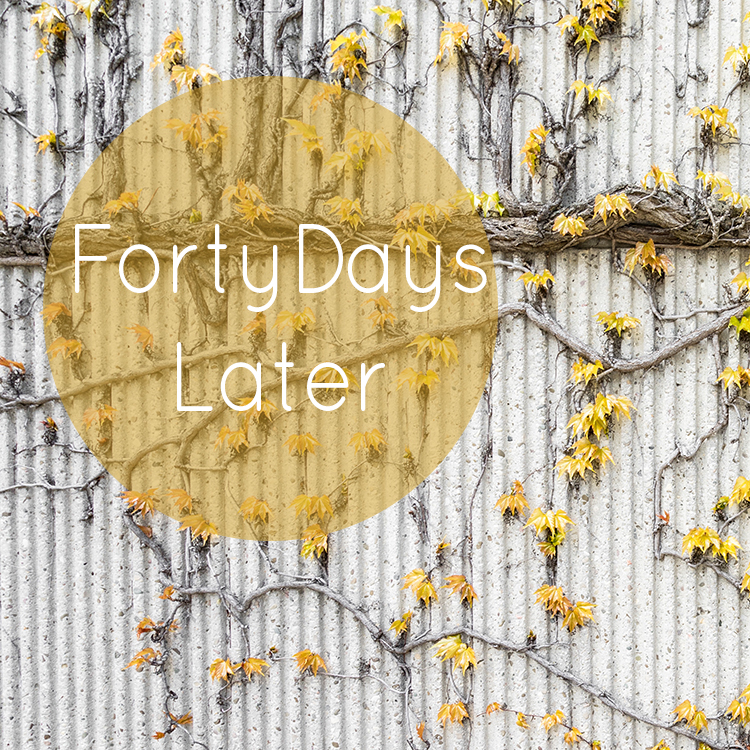 Forty_days