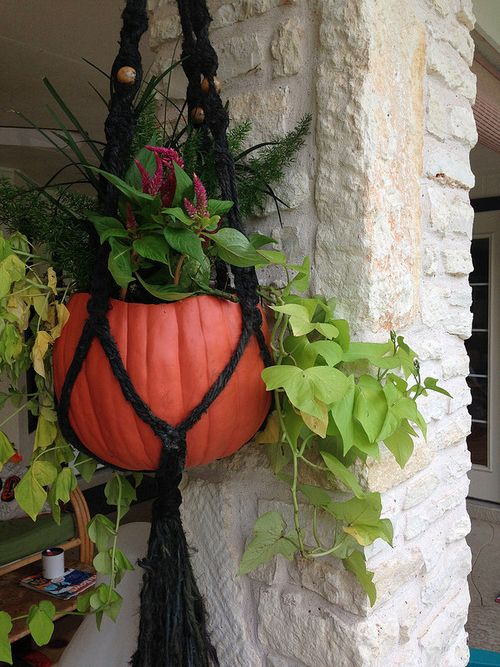 Pumpkin_planter